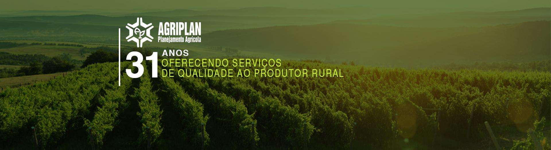 156633497815_31anos_oferecendo_servicos.jpg