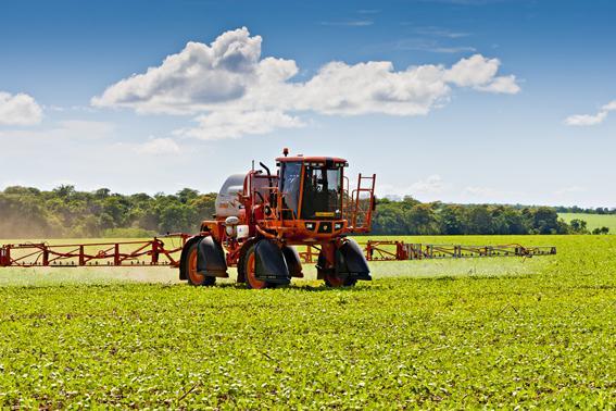 Coberturas vegetais são opção sustentável no manejo de plantas daninhas
