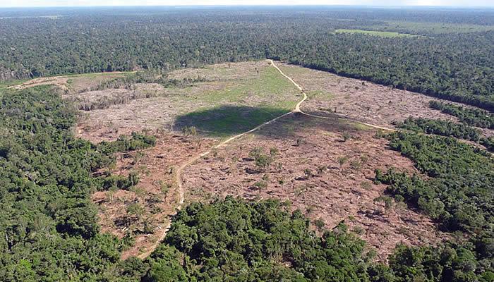 MPF começa a processar produtores rurais via satélite e pede R$ 1,5 bilhão em indenização