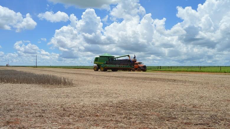 Rally da Safra: colheita de soja pode ser recorde
