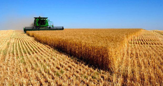 USDA aumenta estoques dos EUA e safra do Brasil para 112 mi de t