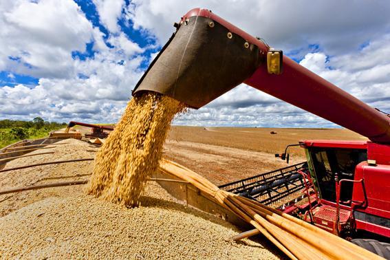 O agronegócio carrega o Brasil nas costas