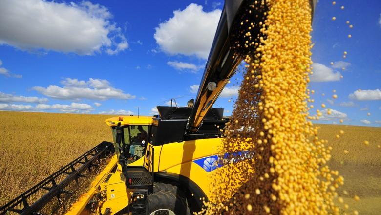 É sempre importante avaliar o quanto se perde na colheita da soja