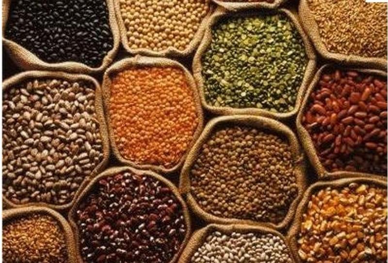Produzir alimentos, a vocação do Brasil