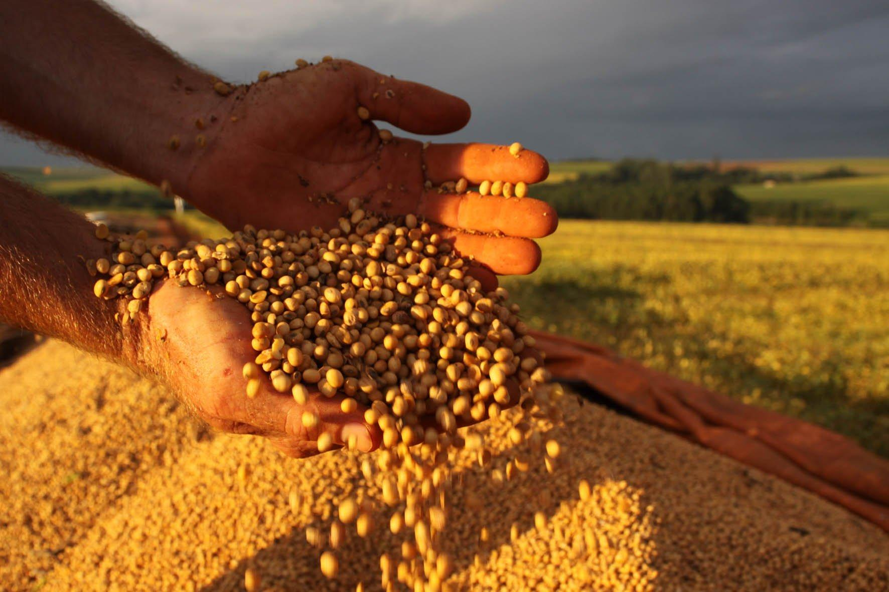 Agricultor, o artífice do novo Brasil