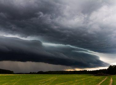 Áreas de soja: veja a previsão de chuvas para setembro, outubro e novembro
