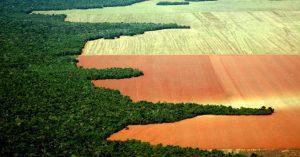 Pode dar certo a Fusão de Agricultura e Meio Ambiente, por Prof. Dr. Marcos Fava Neves