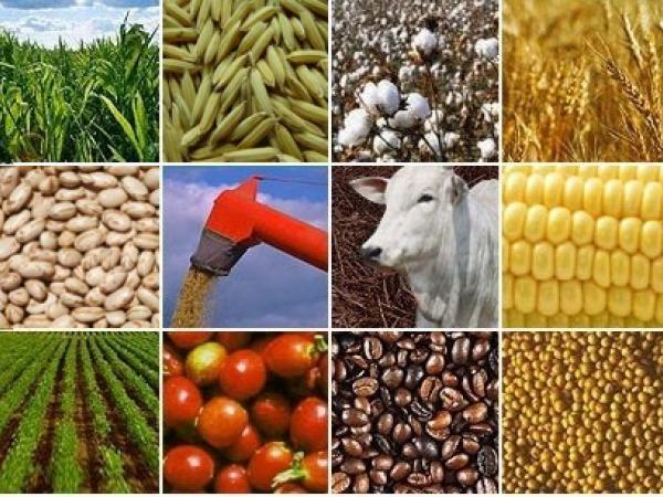 O agro inspira o Brasil que queremos
