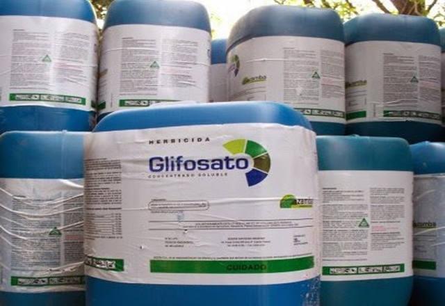 Anvisa diz que glifosato não causa câncer, mas sugere restrições para uso