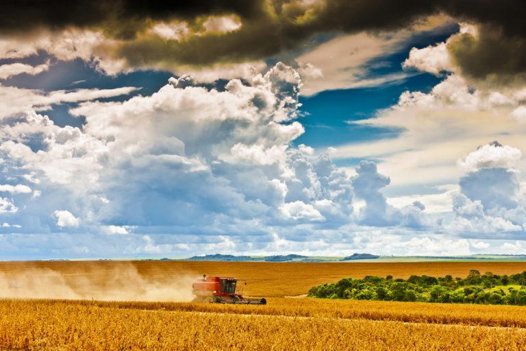 Os desafios do agronegócio brasileiro para 2019