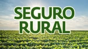 Governo faz ajustes nas regras do Programa de Seguro Rural para o próximo ano
