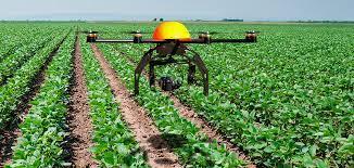 Uso de imagens obtidas com drones para avaliar o estande e o crescimento da soja