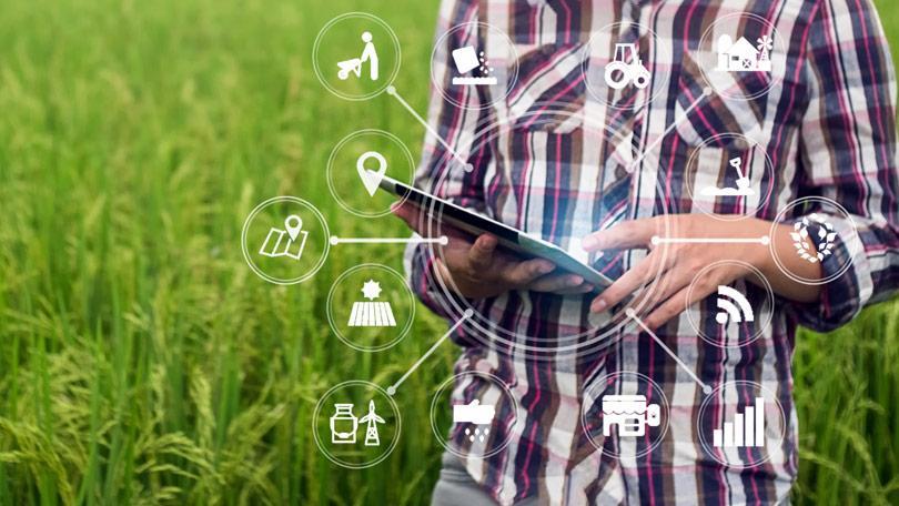 Veja as tecnologias que mais impactaram a produção de soja no Brasil