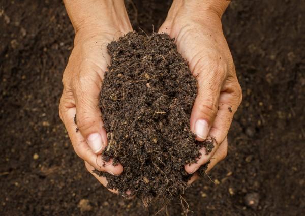 Como está a qualidade física do seu solo? Por Leonnardo Cruvinel Furquim