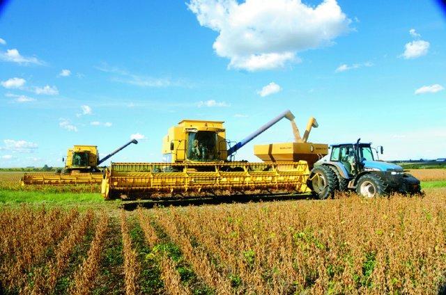 Agro: eficiência produtiva apesar das dificuldades