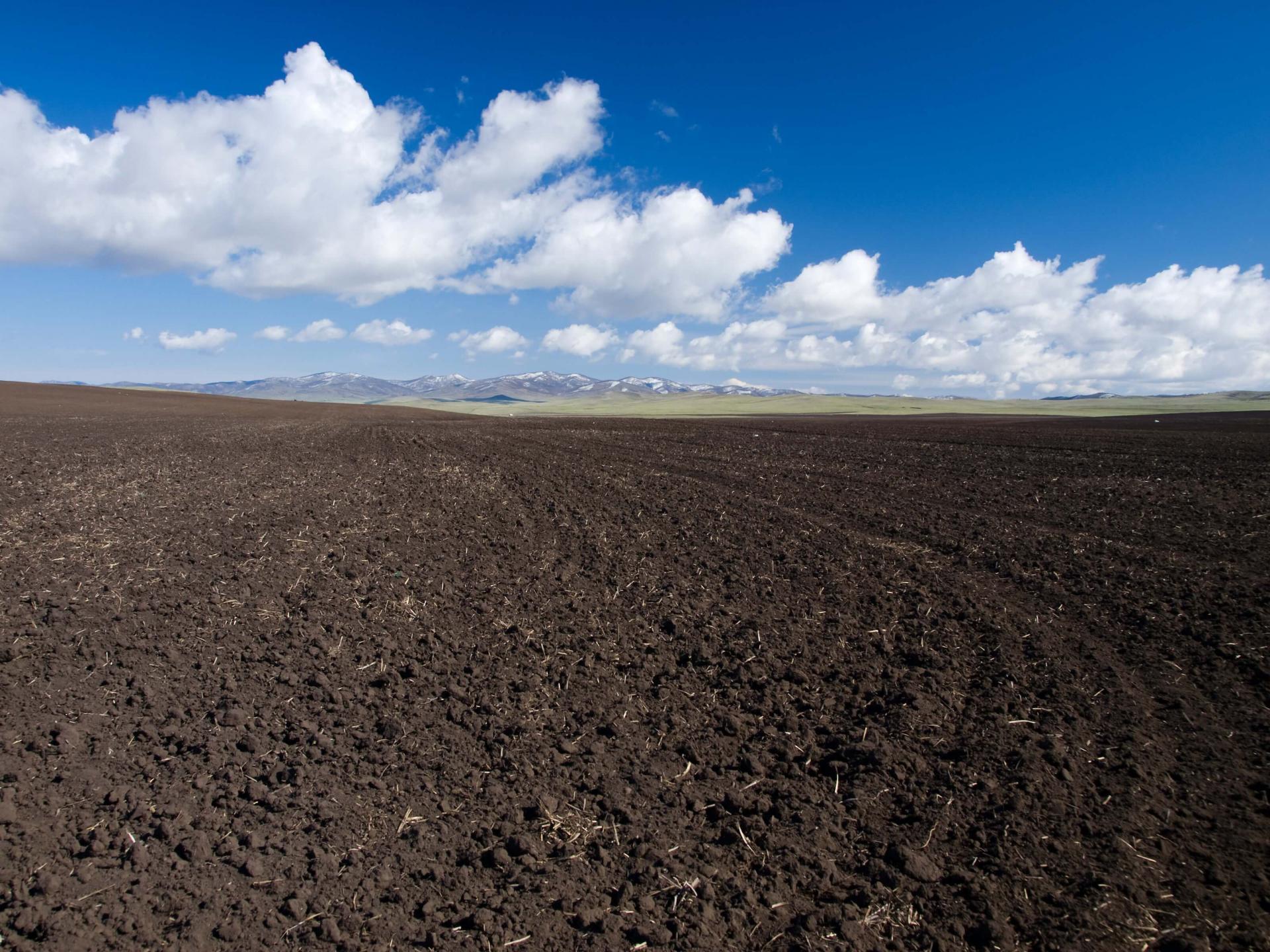 Manejo do solo para altas produtividades